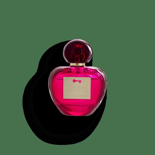 Her Secret Temptation - Antonio Banderas