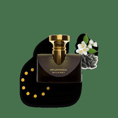Splendida Jasmin Noir - Bvlgari